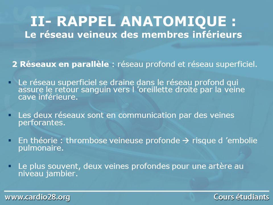 II- RAPPEL ANATOMIQUE : Le réseau veineux des membres inférieurs