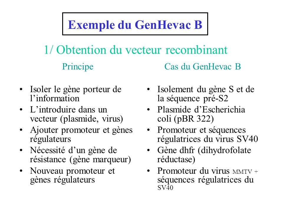 1/ Obtention du vecteur recombinant