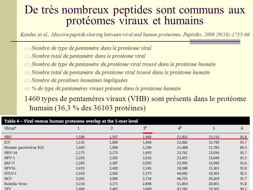 De très nombreux peptides sont communs aux protéomes viraux et humains Kanduc et al., Massive peptide sharing between viral and human proteomes. Peptides. 2008 29(10):1755-66
