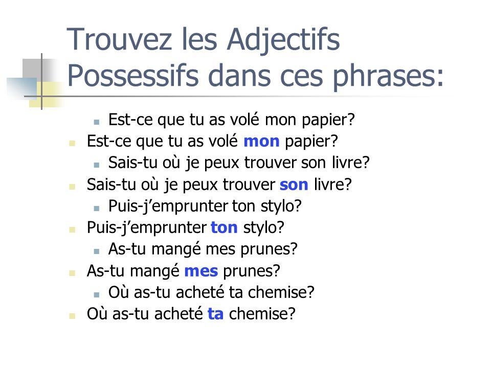 Trouvez les Adjectifs Possessifs dans ces phrases:
