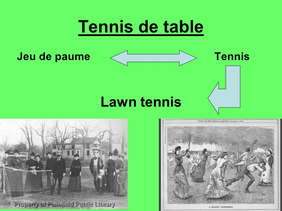 Tennis de table Jeu de paume Tennis Lawn tennis