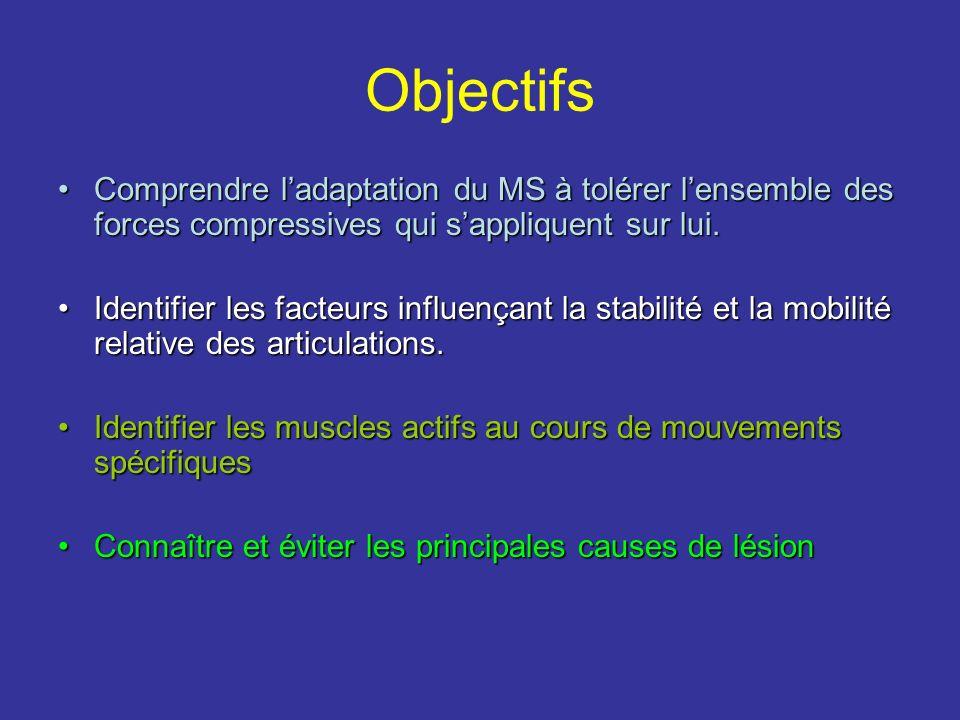 Objectifs Comprendre l'adaptation du MS à tolérer l'ensemble des forces compressives qui s'appliquent sur lui.