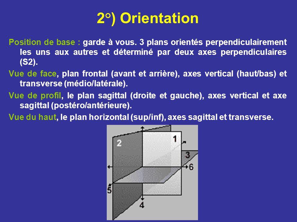 2°) Orientation