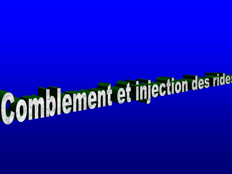 Comblement et injection des rides