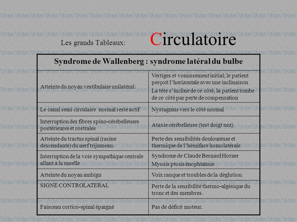 Les grands Tableaux: Circulatoire