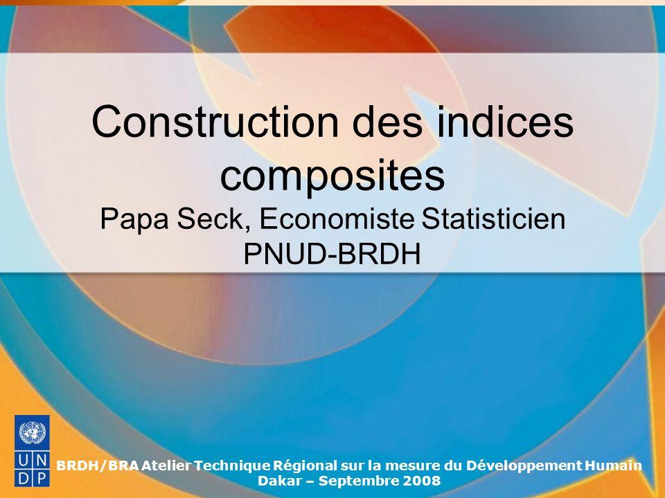 Construction des indices composites Papa Seck, Economiste Statisticien PNUD-BRDH