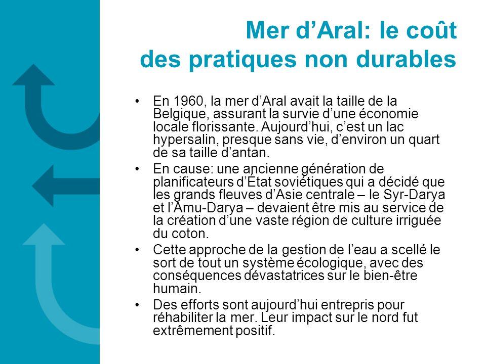 Mer d'Aral: le coût des pratiques non durables