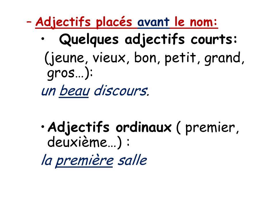 Quelques adjectifs courts: (jeune, vieux, bon, petit, grand, gros…):