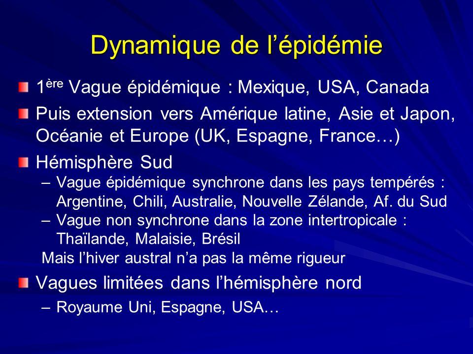 Dynamique de l'épidémie