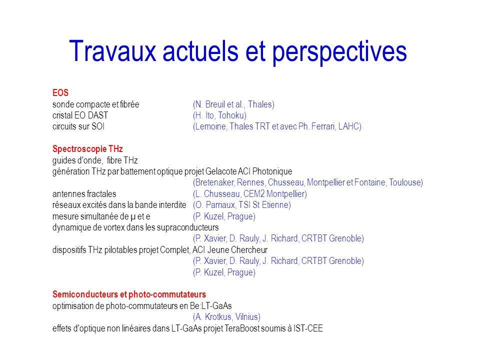 Travaux actuels et perspectives
