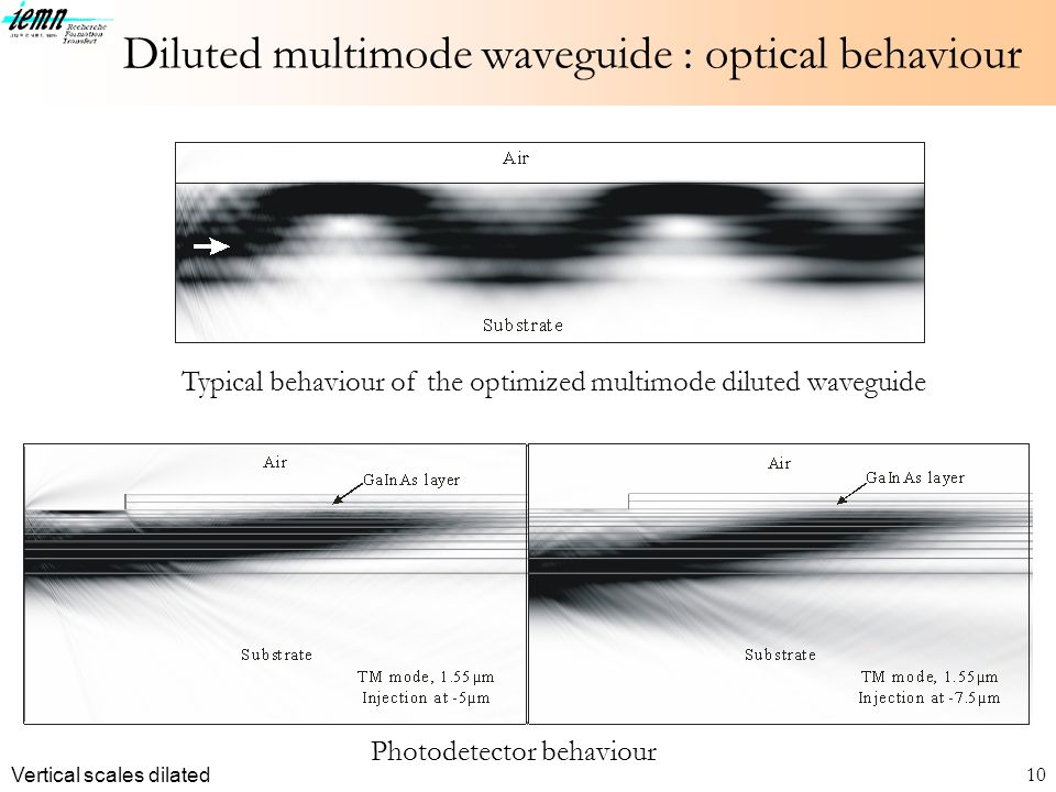 Diluted multimode waveguide : optical behaviour