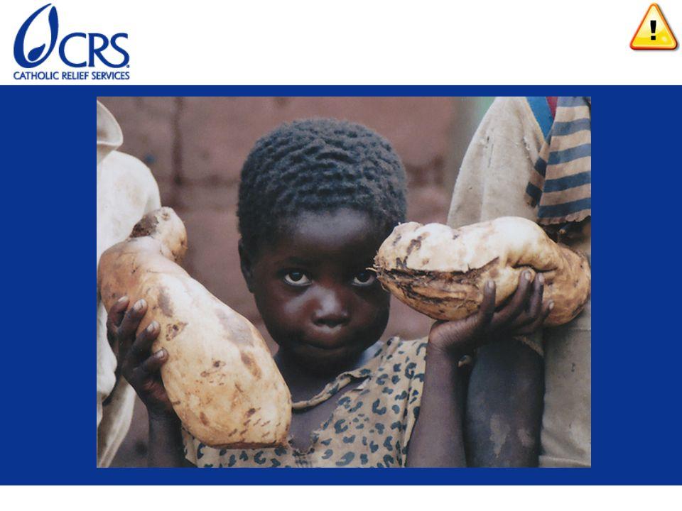 Le manuel de FdF comprend plusieurs diapositives avec des images
