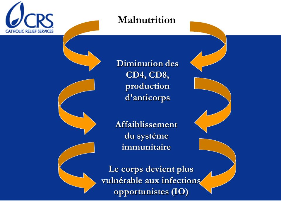 Malnutrition Diminution des CD4, CD8, production d anticorps