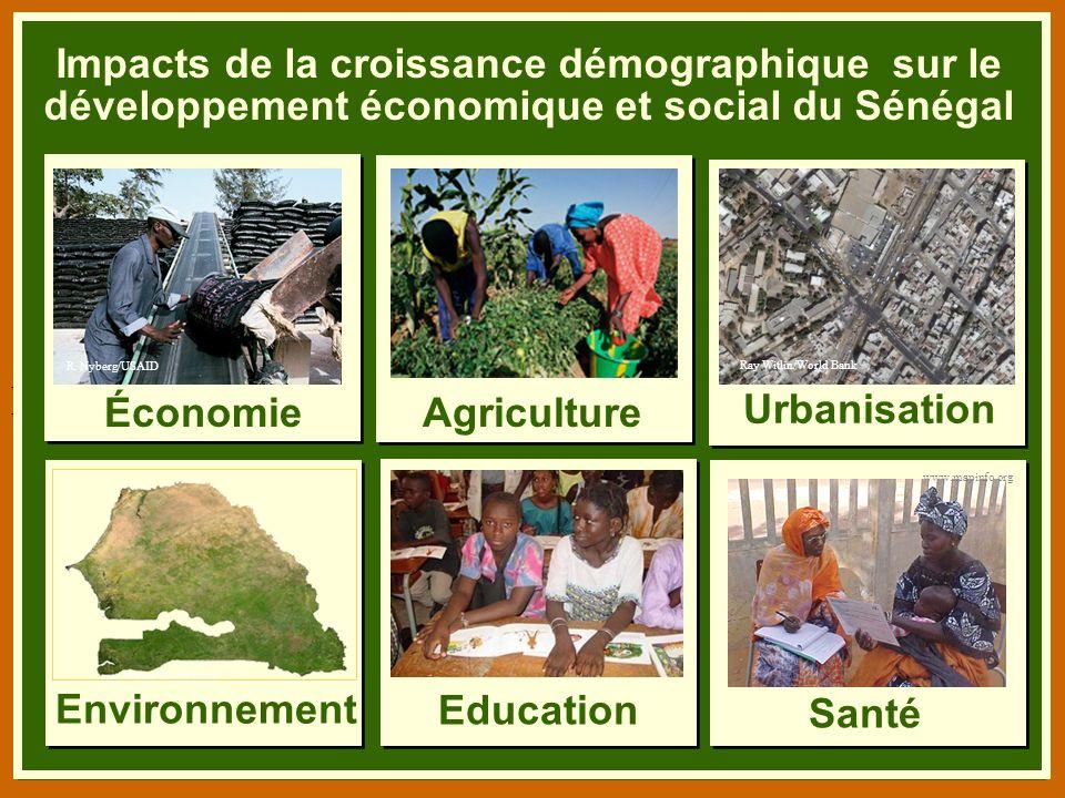 B. Niang/BASICS/USAID Impacts de la croissance démographique sur le développement économique et social du Sénégal.