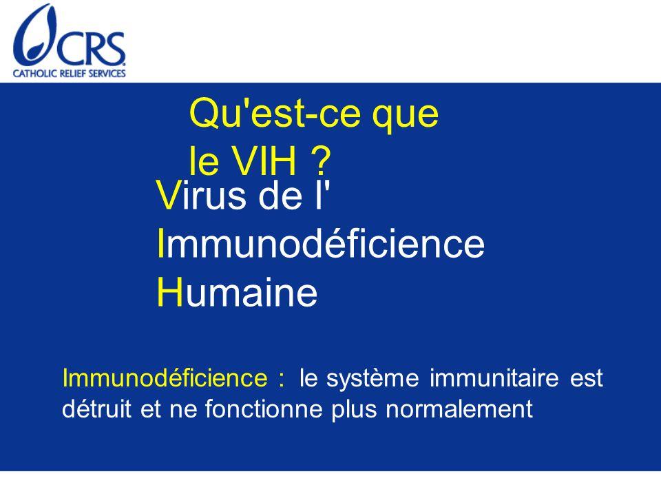 Virus de l Immunodéficience Humaine