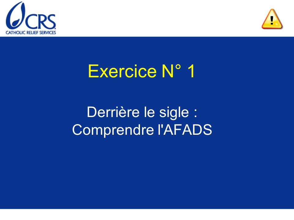 Exercice N° 1 Derrière le sigle : Comprendre l AFADS