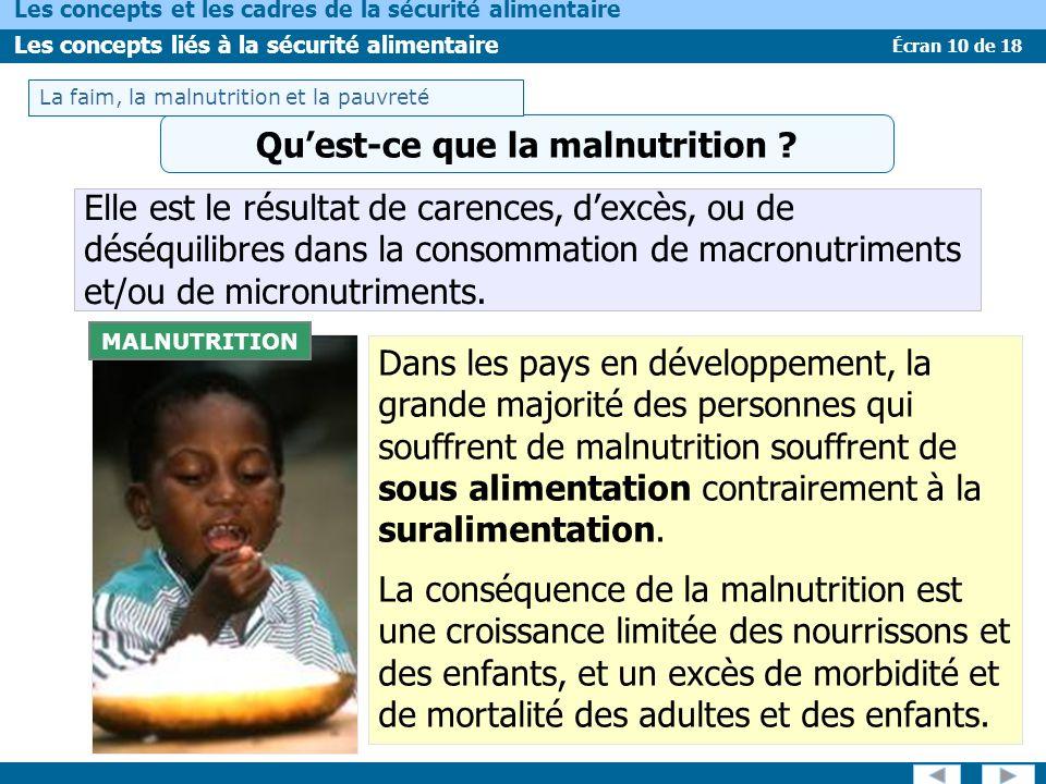 Qu'est-ce que la malnutrition