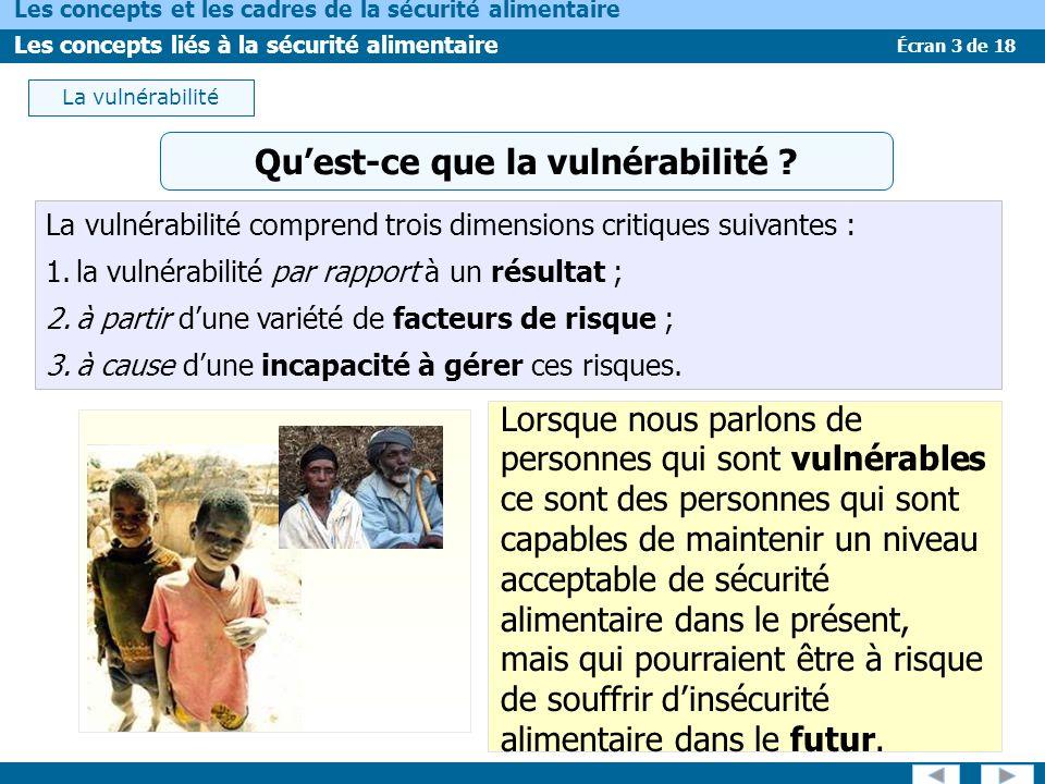 Qu'est-ce que la vulnérabilité
