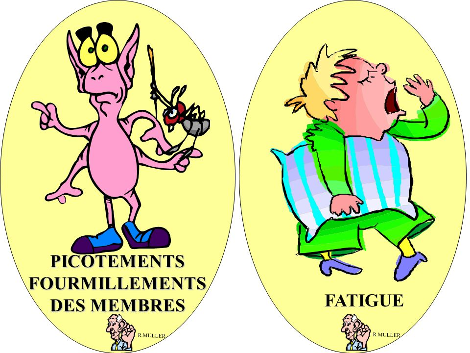 PICOTEMENTS FOURMILLEMENTS DES MEMBRES