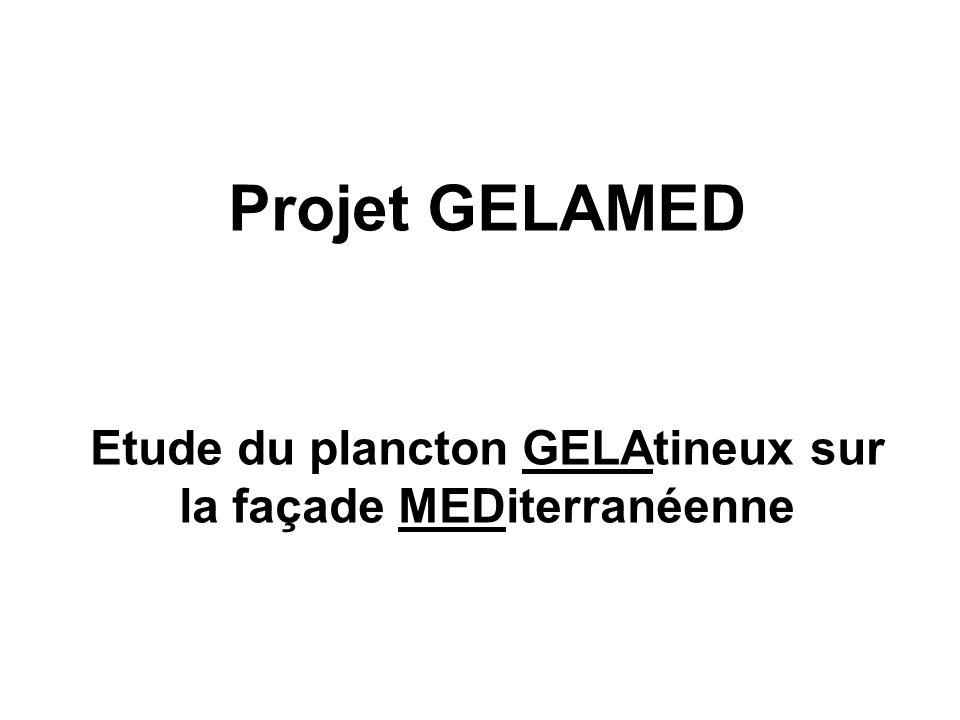 Etude du plancton GELAtineux sur la façade MEDiterranéenne
