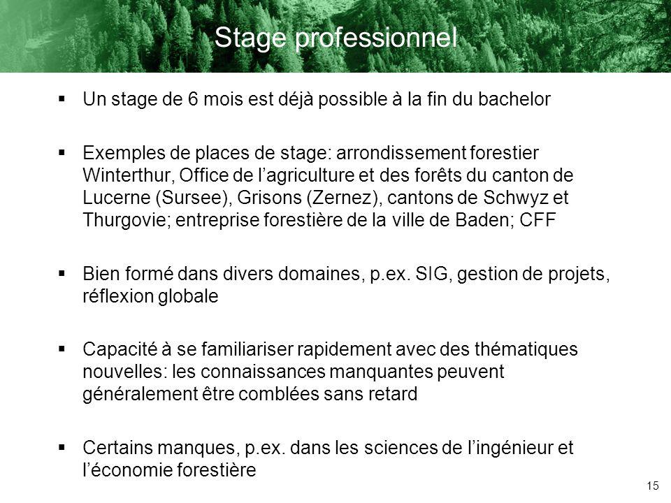 Stage professionnel Un stage de 6 mois est déjà possible à la fin du bachelor.