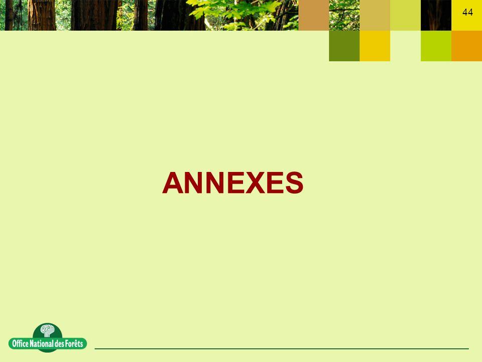 ANNEXES Le bilan détaillé des actions 2005 sera dressé au printemps 2006 (comité FOP printemps 2006).