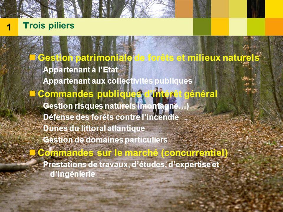 Gestion patrimoniale de forêts et milieux naturels
