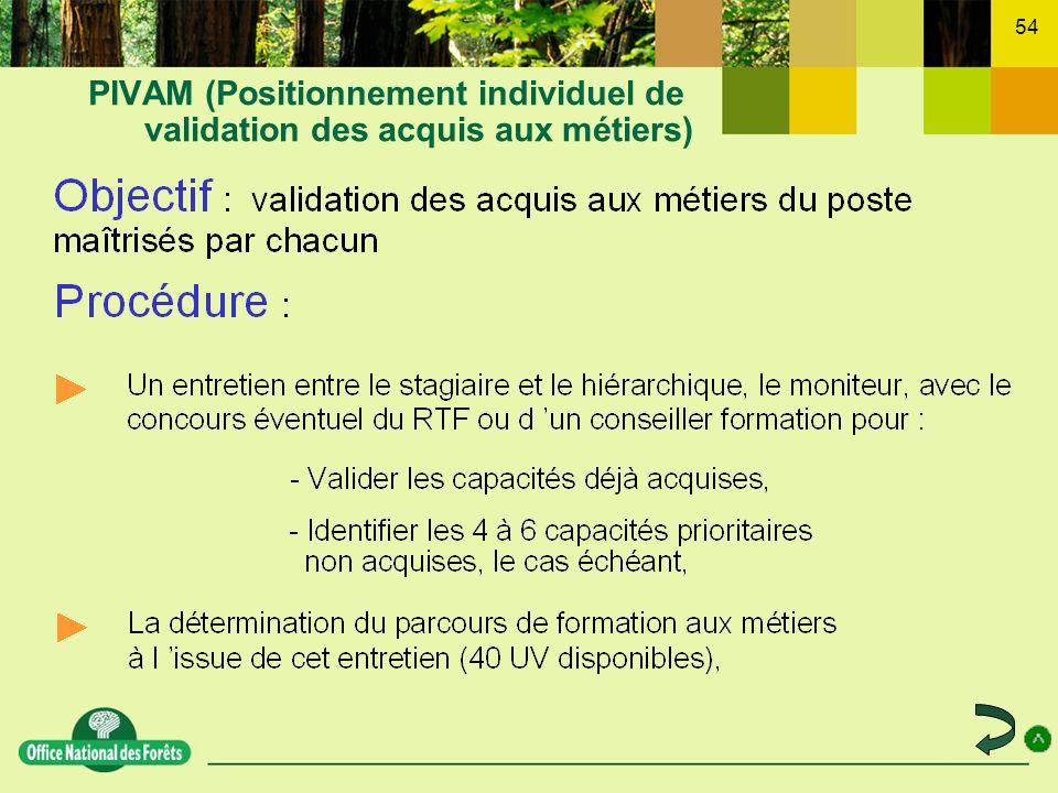 PIVAM (Positionnement individuel de validation des acquis aux métiers)