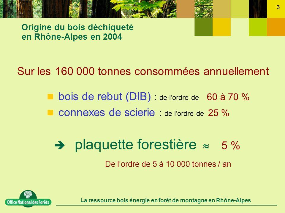 Origine du bois déchiqueté en Rhône-Alpes en 2004