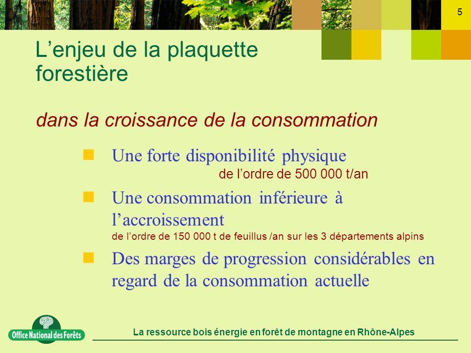 L'enjeu de la plaquette forestière dans la croissance de la consommation