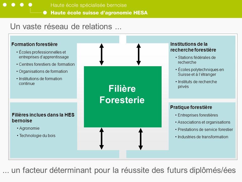 Filière Foresterie Un vaste réseau de relations ...