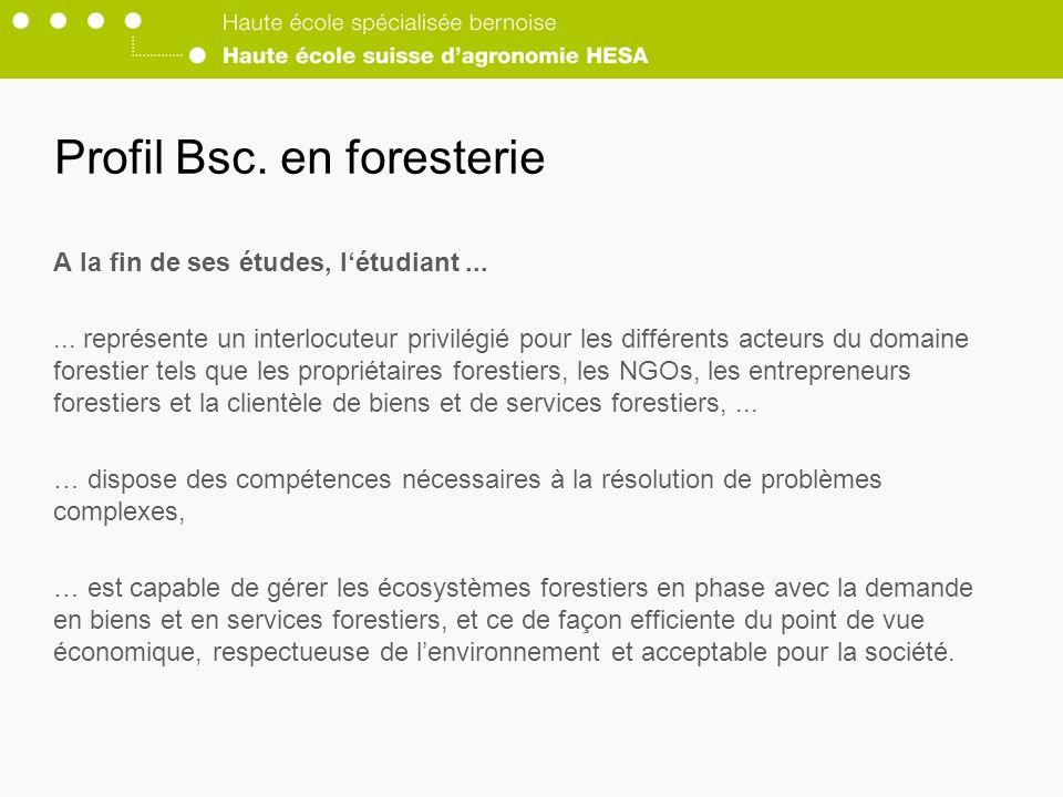 Profil Bsc. en foresterie