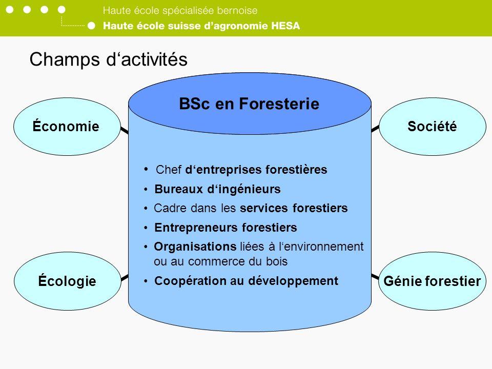 Champs d'activités BSc en Foresterie Économie Société