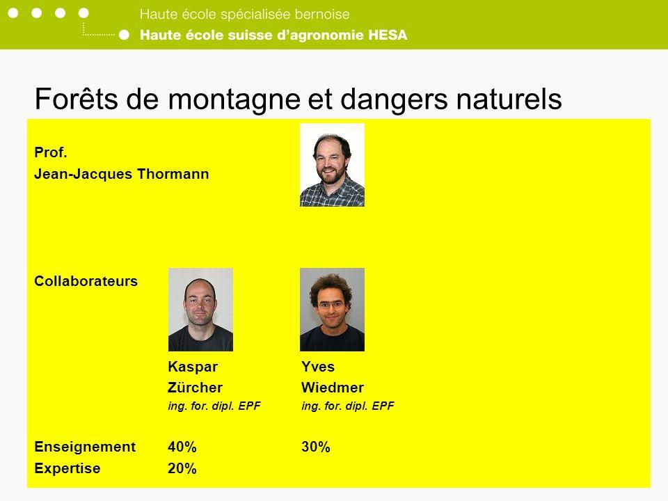 Forêts de montagne et dangers naturels
