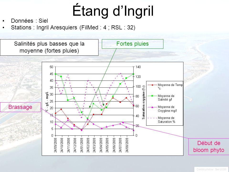 Salinités plus basses que la moyenne (fortes pluies)