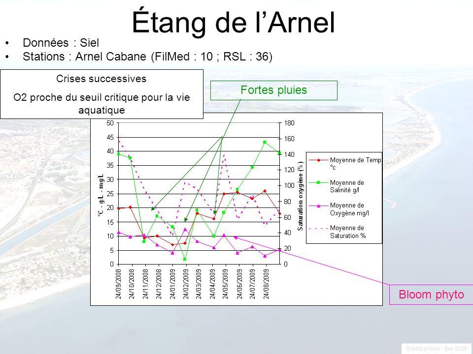 O2 proche du seuil critique pour la vie aquatique
