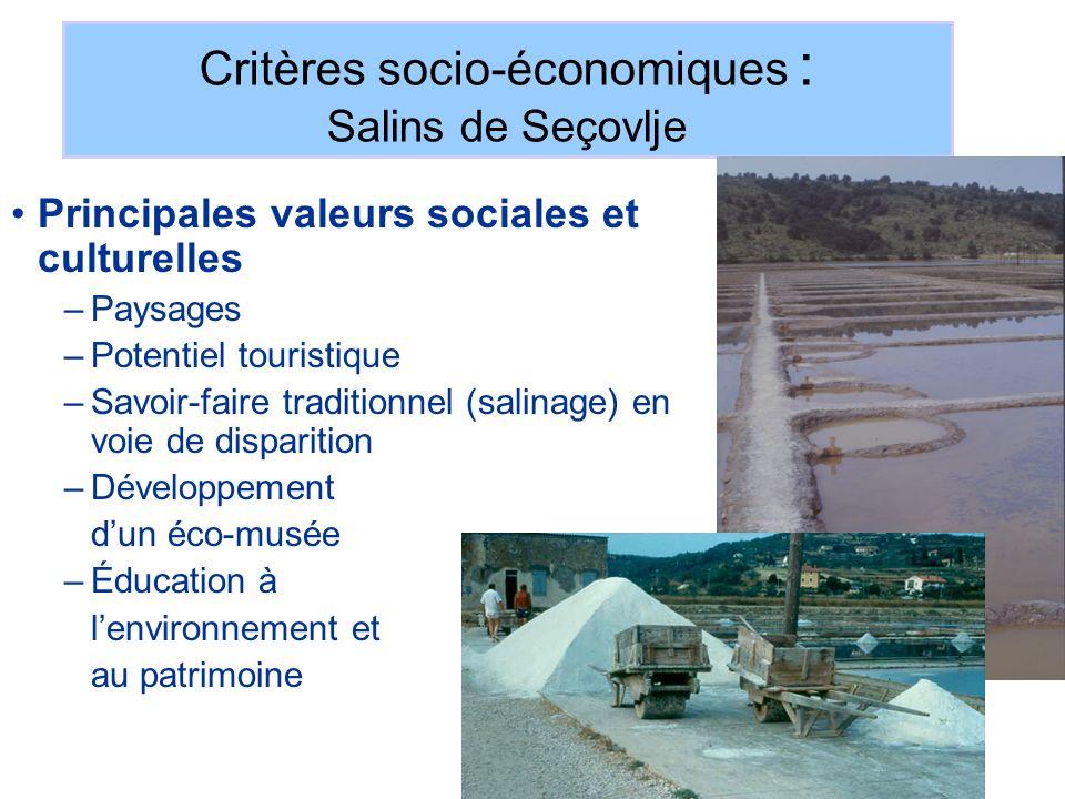 Critères socio-économiques : Salins de Seçovlje