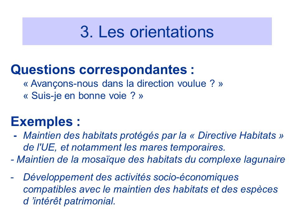 3. Les orientations Questions correspondantes : Exemples :