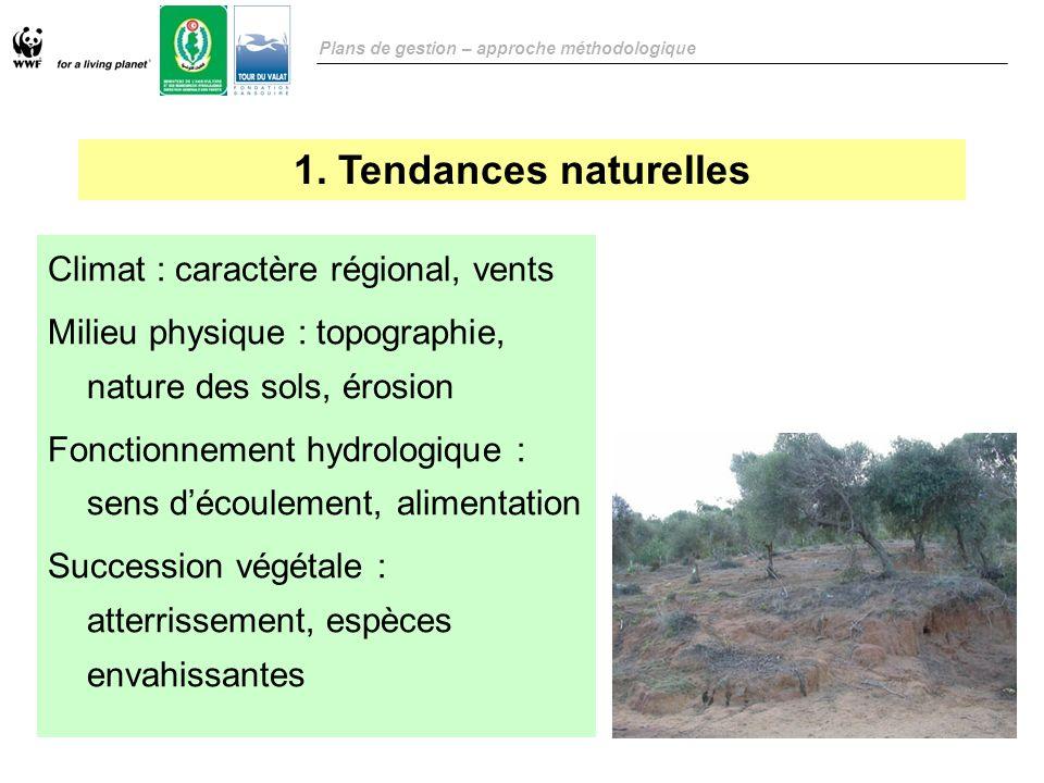 1. Tendances naturelles Climat : caractère régional, vents