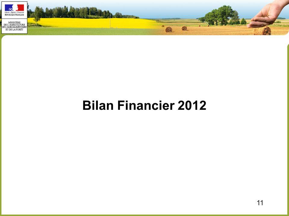 Bilan Financier 2012 11