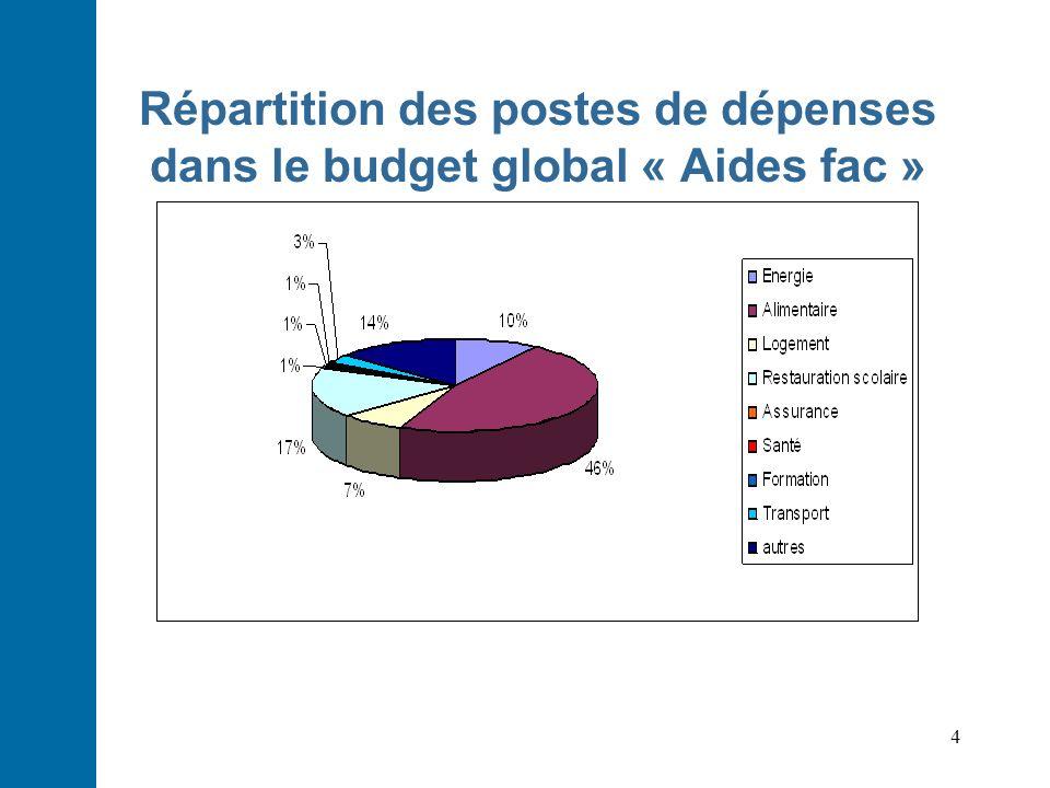 Répartition des postes de dépenses dans le budget global « Aides fac »