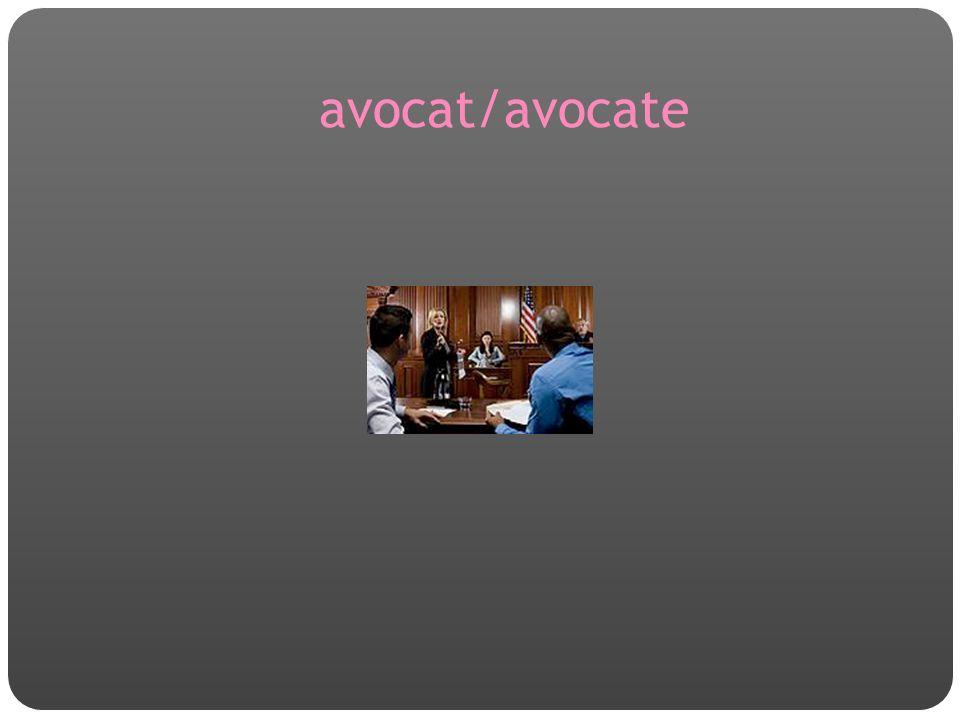 avocat/avocate