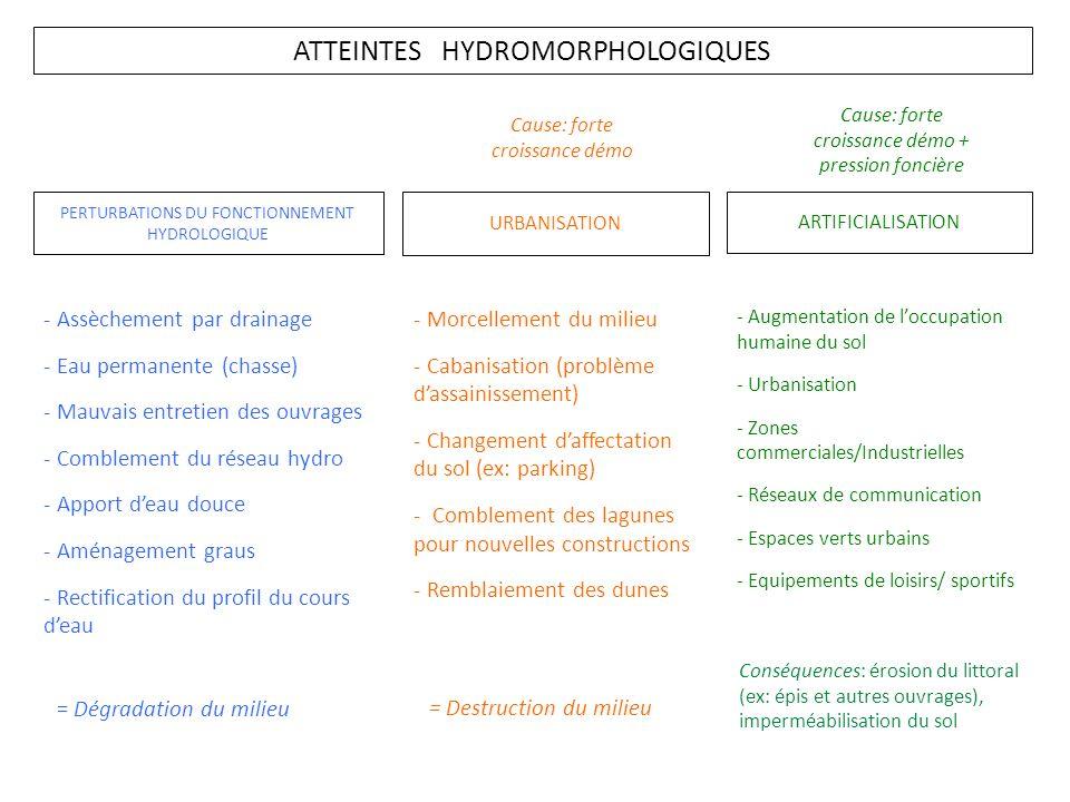 ATTEINTES HYDROMORPHOLOGIQUES