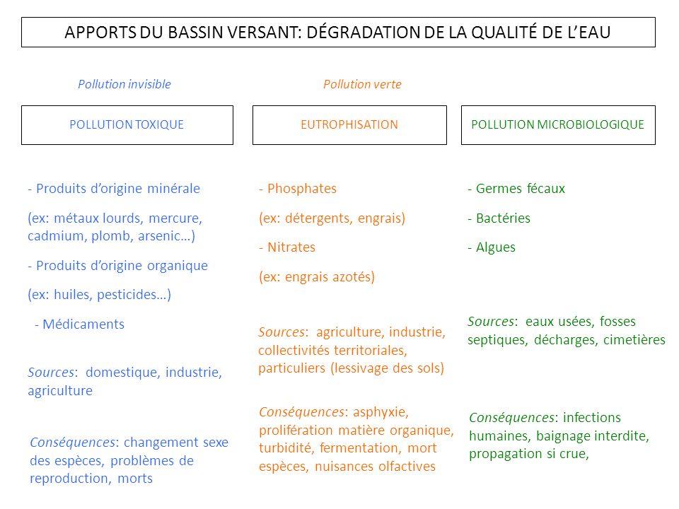 APPORTS DU BASSIN VERSANT: DÉGRADATION DE LA QUALITÉ DE L'EAU