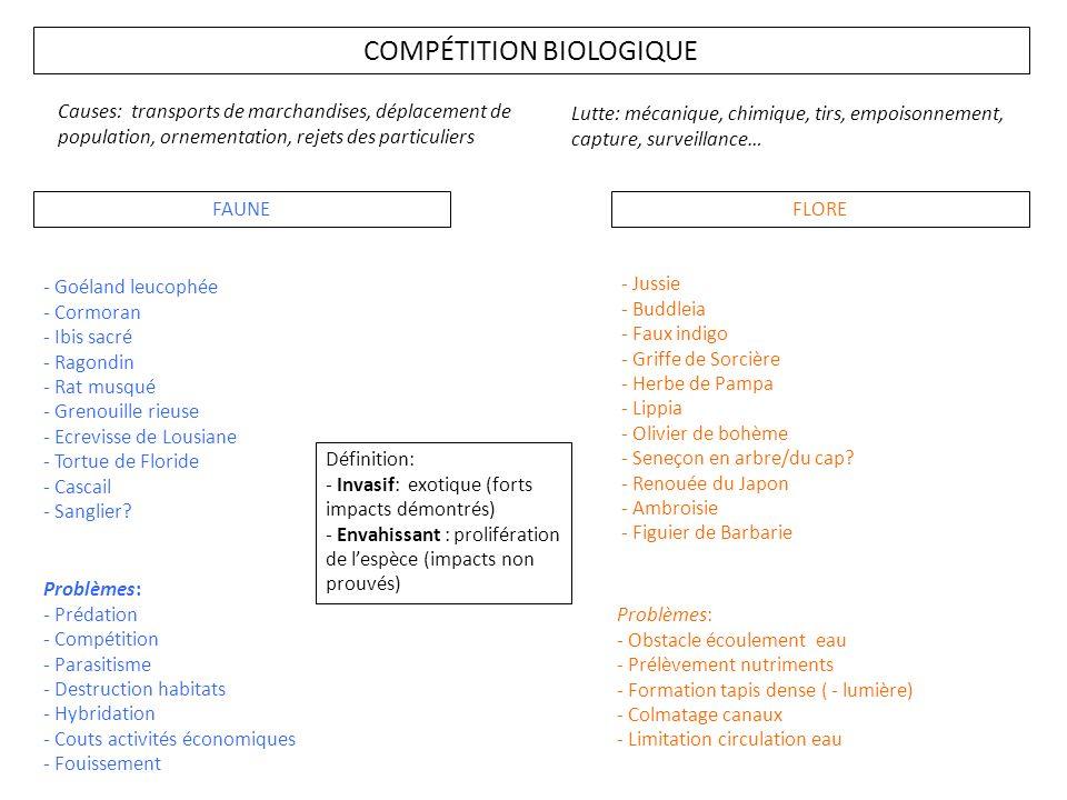 COMPÉTITION BIOLOGIQUE