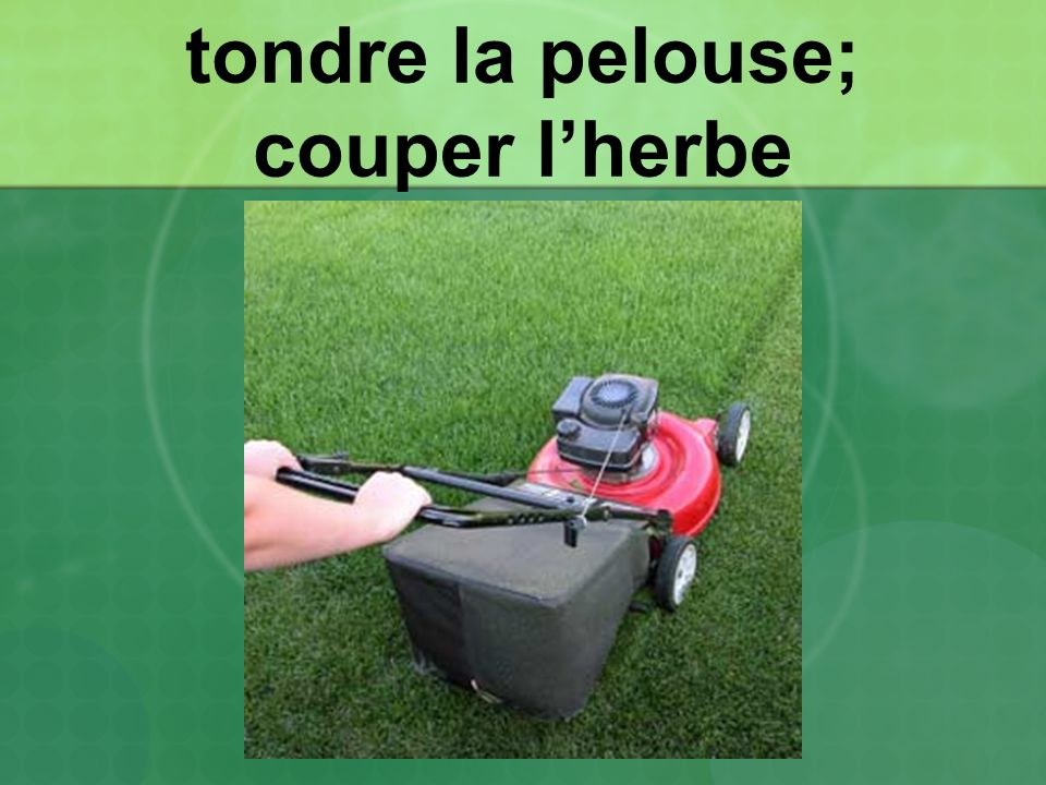 tondre la pelouse; couper l'herbe