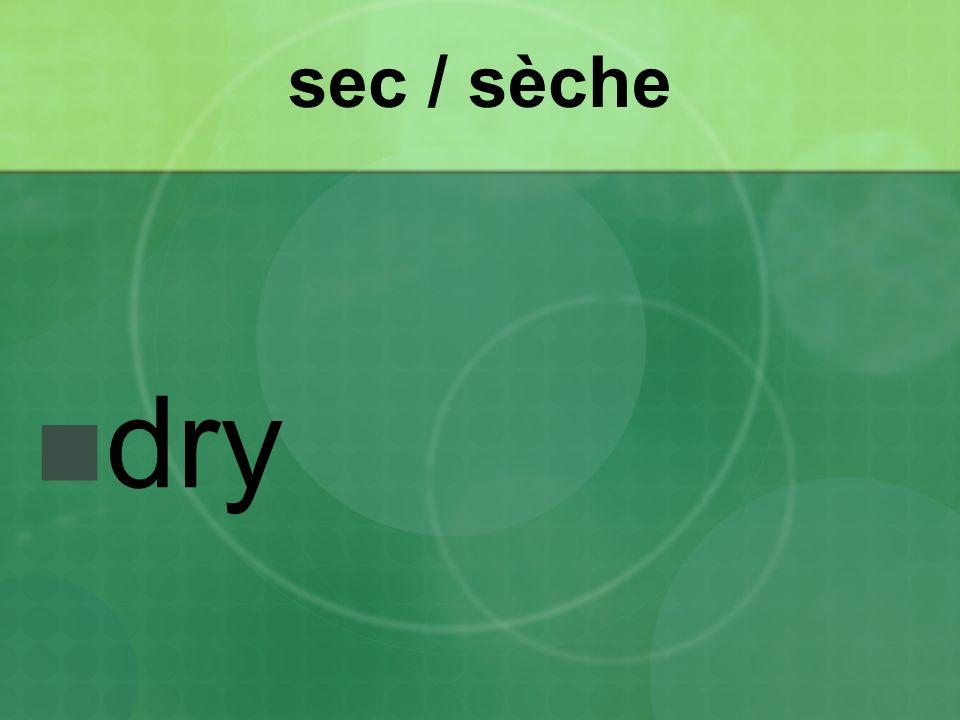 sec / sèche dry