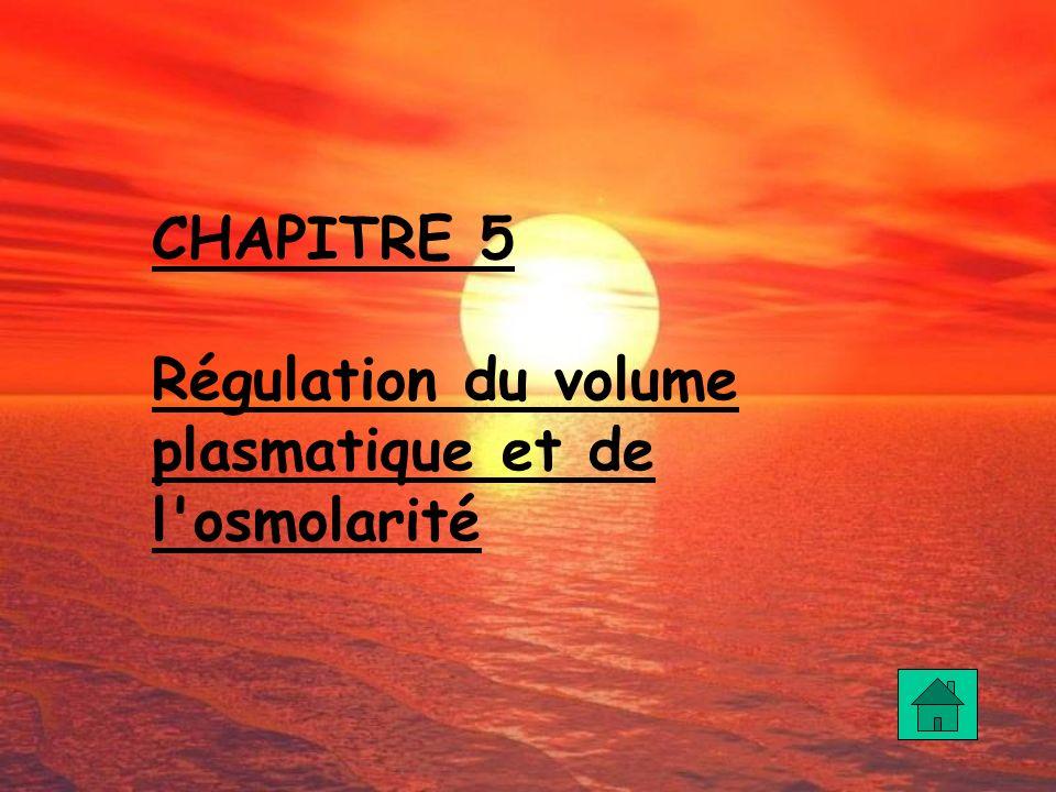 CHAPITRE 5 Régulation du volume plasmatique et de l osmolarité
