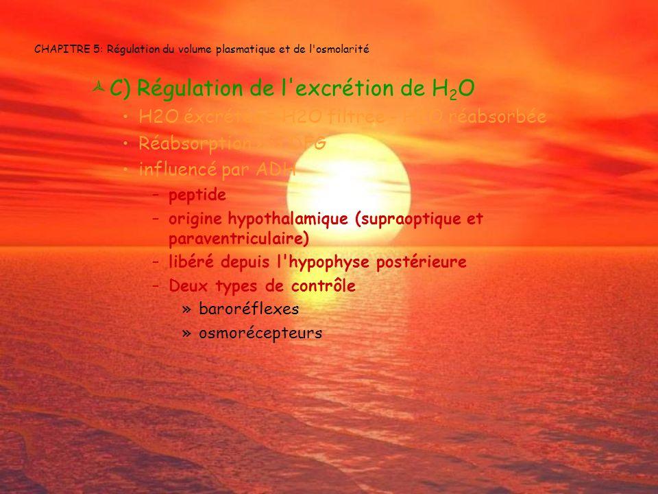 CHAPITRE 5: Régulation du volume plasmatique et de l osmolarité