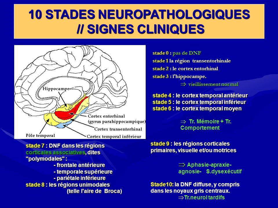 10 STADES NEUROPATHOLOGIQUES // SIGNES CLINIQUES